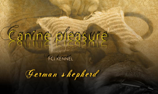 Canine pleasure fci kennel